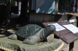 酒列磯崎神社 福の亀