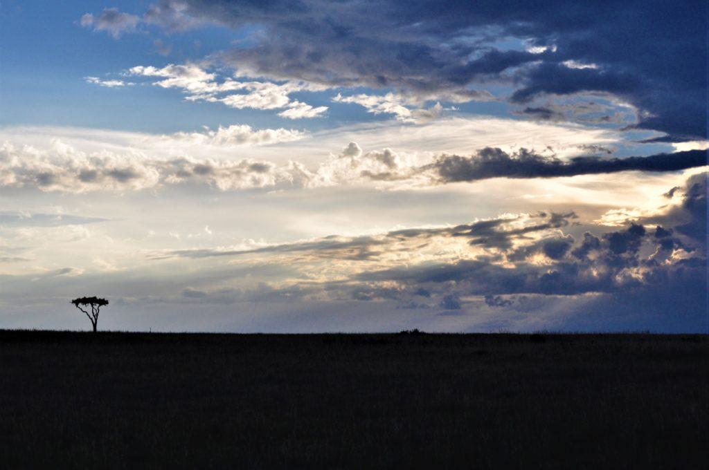 ケニアの景観